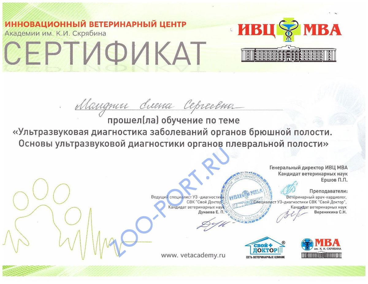 Момджи Елена Сергеевна